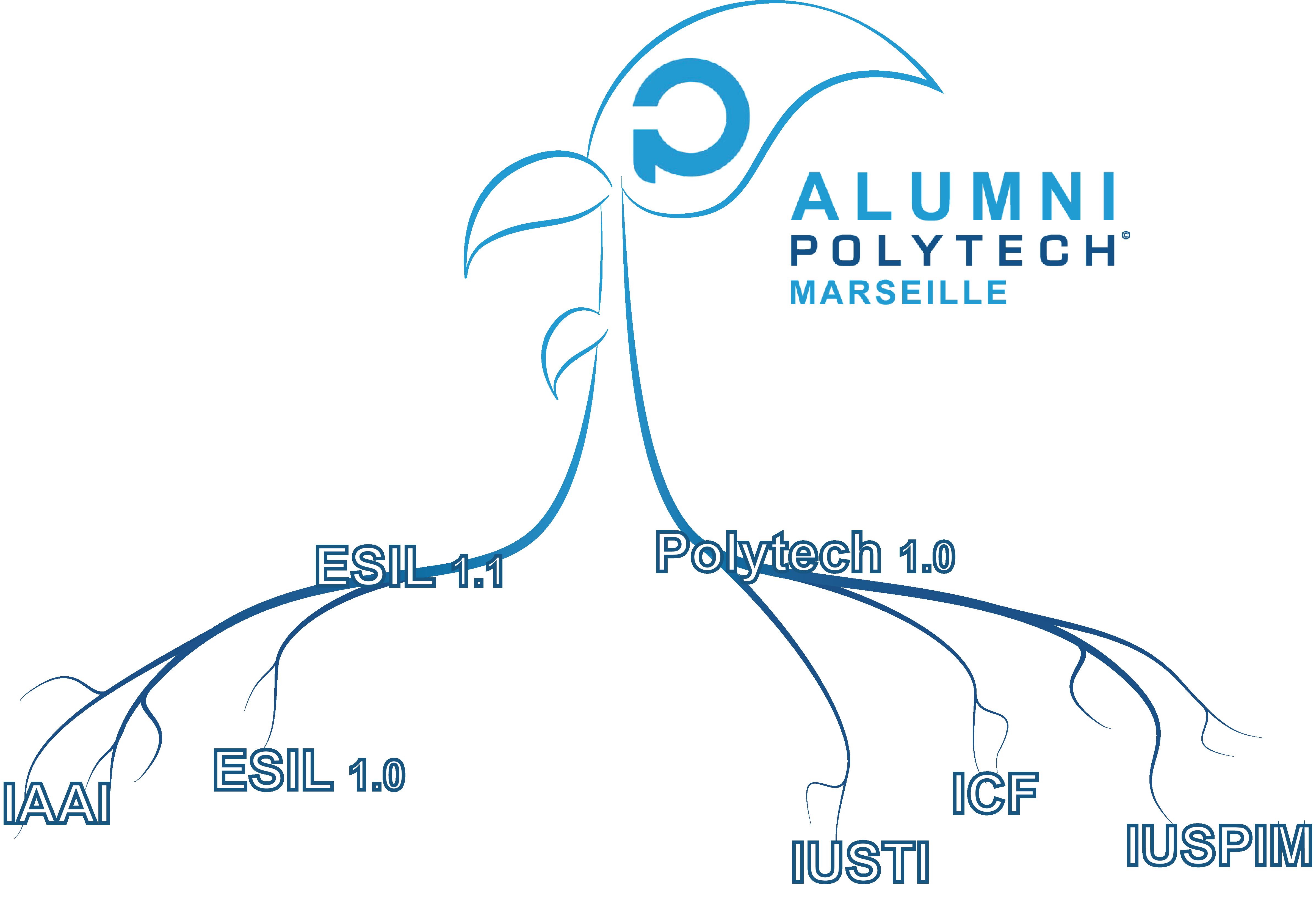 Carte historique de l'association des anciens élèves ingénieurs Polytech Marseille : ESIL, IAAI, IUSTI, ICF, IUSPIM